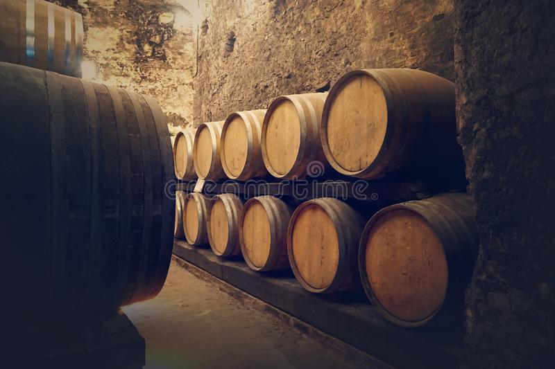 Winery cellar. With wine barrels stock photography