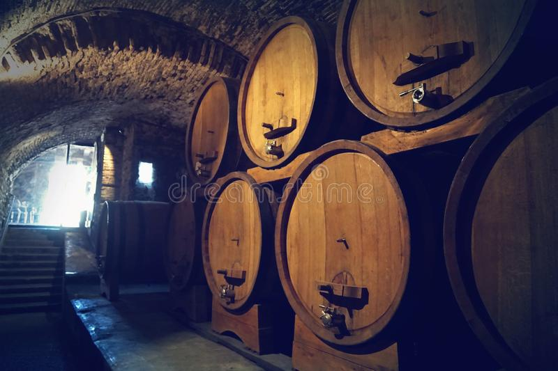 Winery cellar. With wine barrels royalty free stock photo