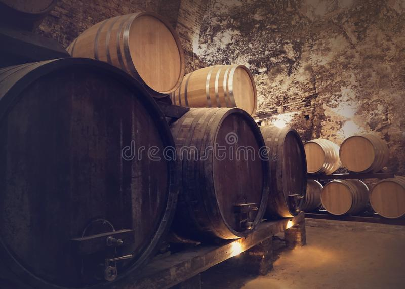 Winery cellar. With wine barrels royalty free stock photos