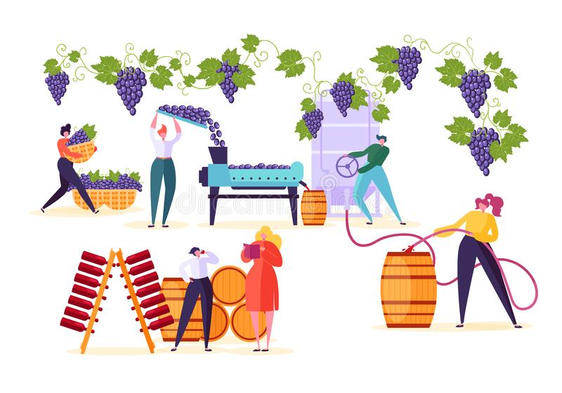 Winery Factory. Wine Production Process Set. Winemaker Character Crushing Fermentation Bottling Red Grape. Alcohol Drink to Wooden Barrel with Old Vineyard vector illustration