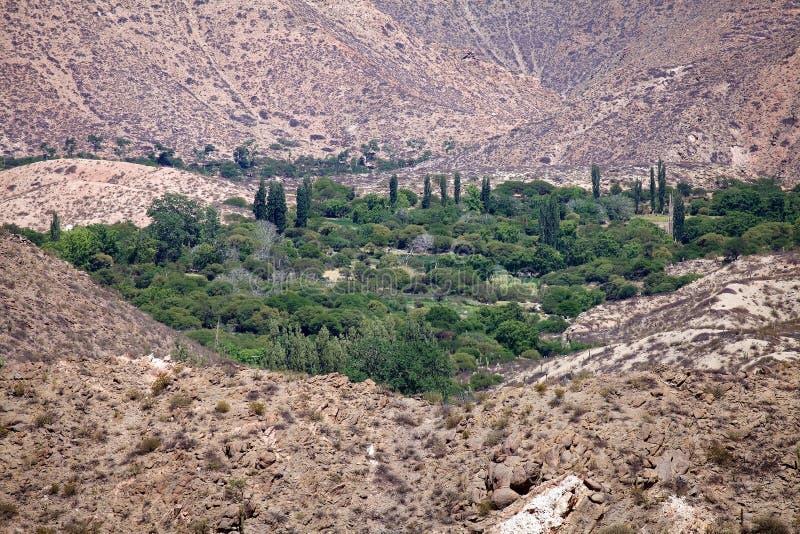 Winery, Finca Tacuil, w dolinie Calchaqui wzdłuż szlaku winiarskiego Argentyny, Argentyna obraz royalty free