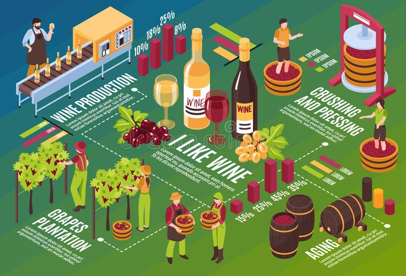 Winery Isometric Flowchart. Drink stages production from vineyard till wine aging on green background horizontal vector illustration vector illustration