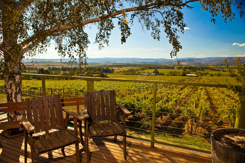 Winery Overlook stock image
