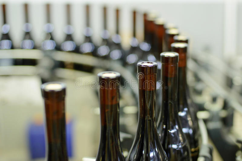 Winery Production Line royalty free stock photography