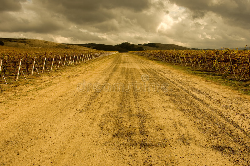 Winery Road stock image