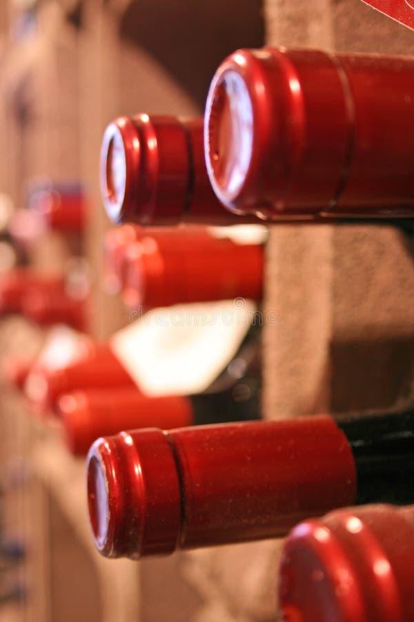 wines royaltyfri bild