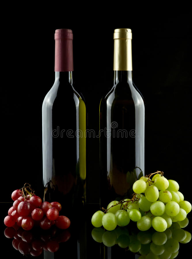 Wines and grapes stock image