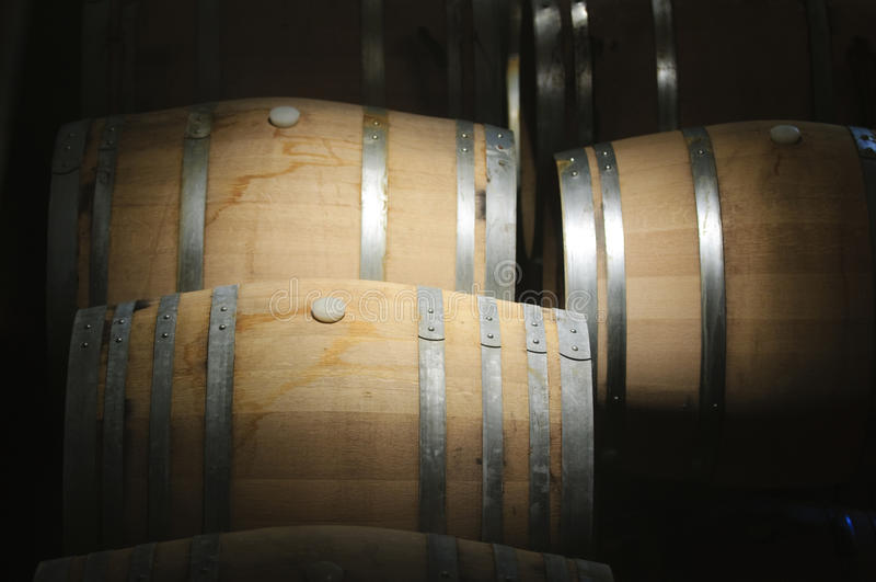 Winetrummor royaltyfri foto
