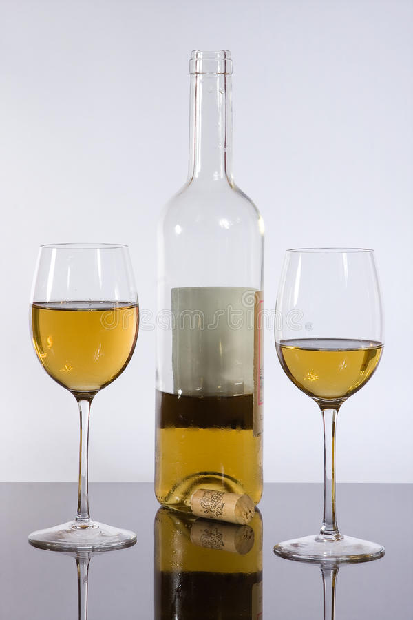 winewineglasses royaltyfri fotografi