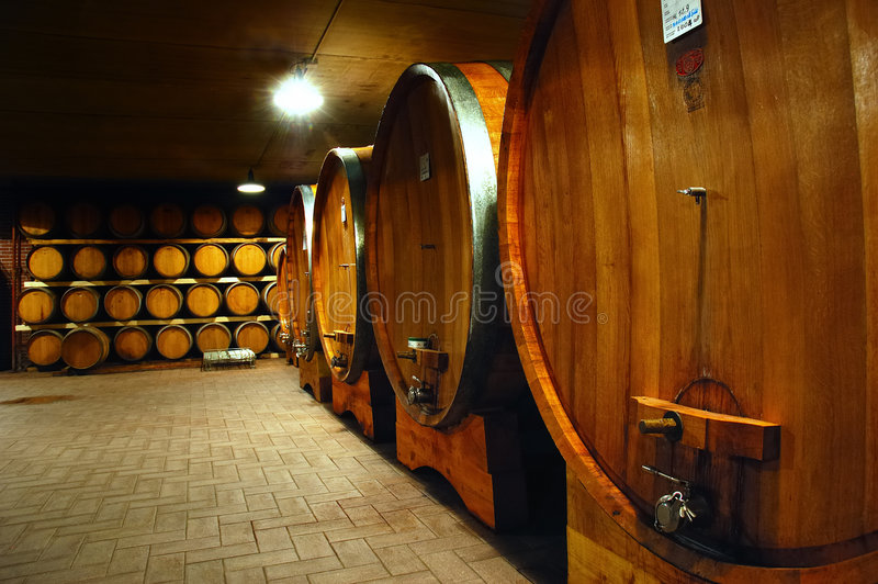 Wineyard Keller lizenzfreies stockbild
