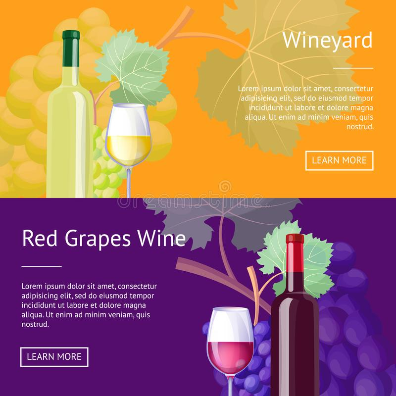 Wineyard and Red Grapes Wine Internet Banners. Set. Delicious exquisite red and white vino in bottles and glasses vector illustrations on web pages vector illustration