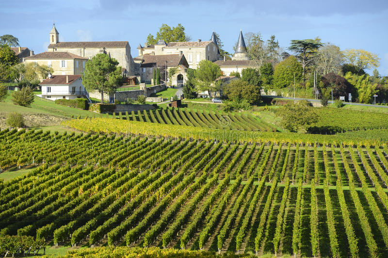 Wineyards av Saint Emilion, Bordeaux vingårdar royaltyfri foto