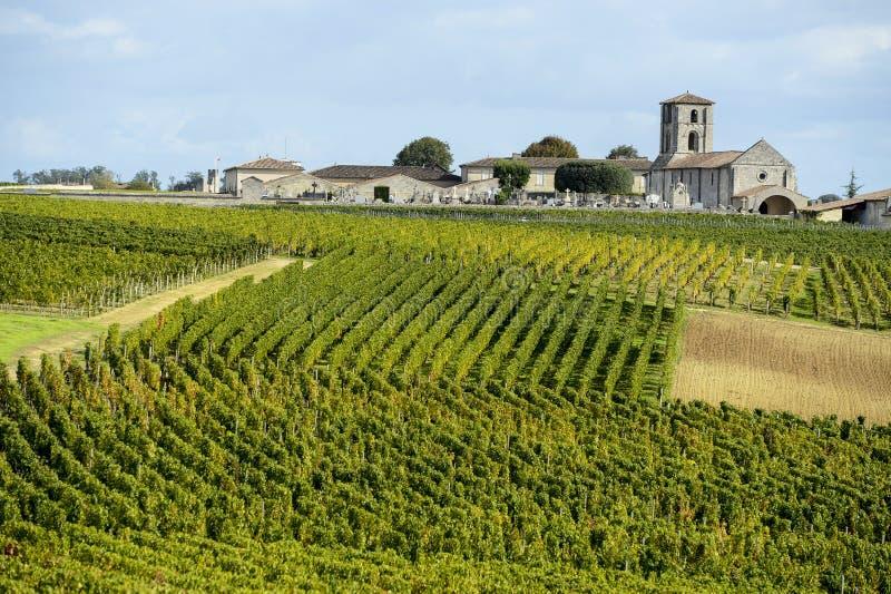 Wineyards von Saint Emilion, Bordeaux-Weinberge lizenzfreie stockfotos