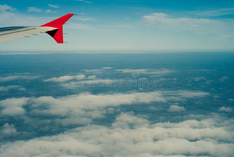 A wing royalty free stock image