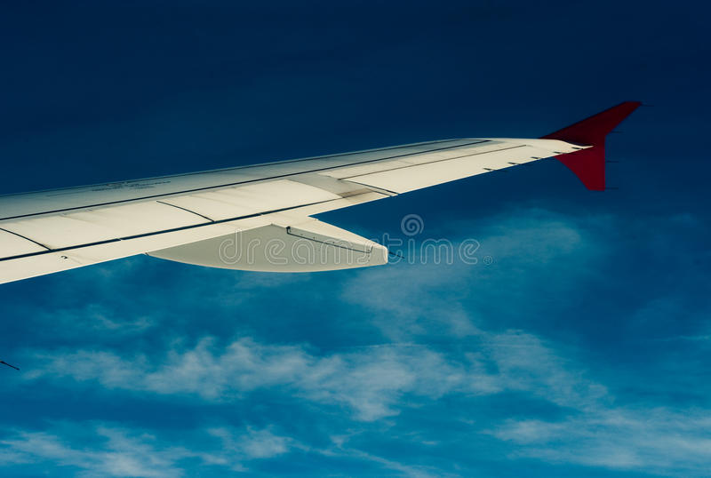 A wing stock photography