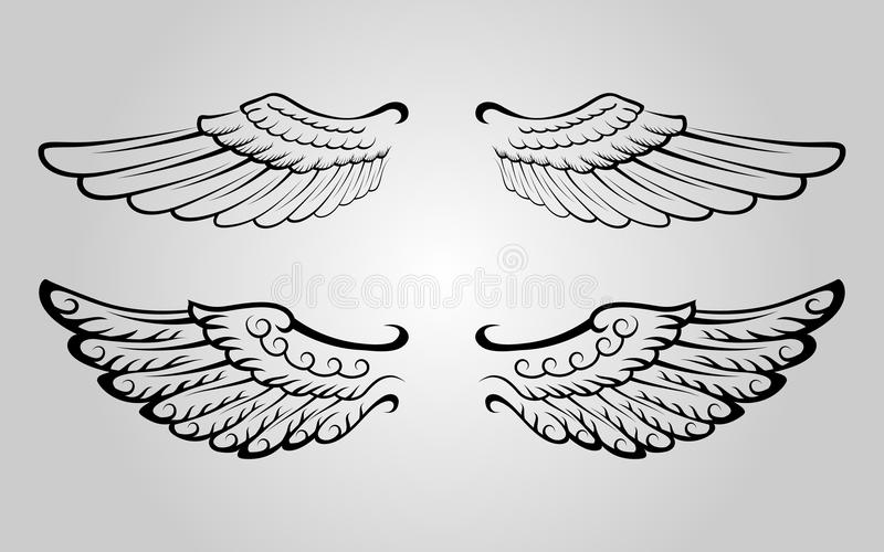 Wing 4 stock image