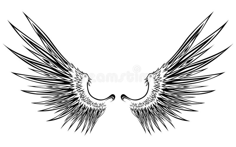 Wing 8 Royalty Free Stock Photo