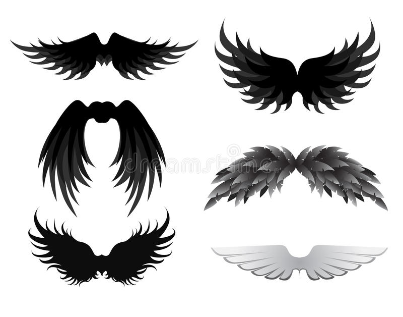 Wing Collection Stock Images