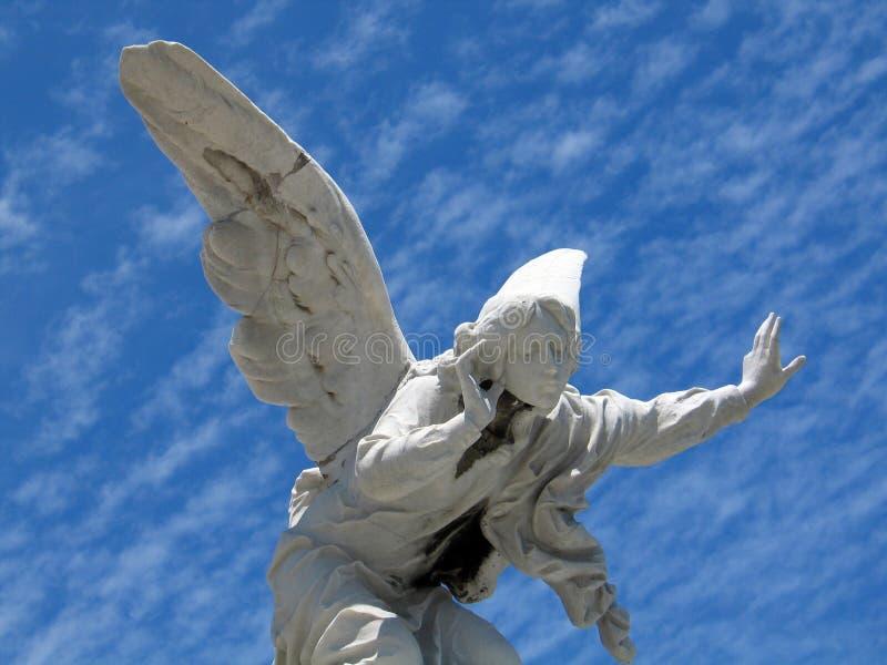 Winged angel royalty free stock image