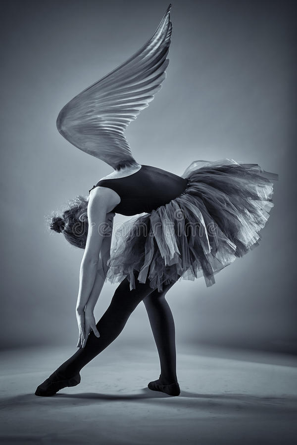 Winged ballerina in monochrome. Conceptual image of a ballerina with wings spread in monochrome toned stock photography