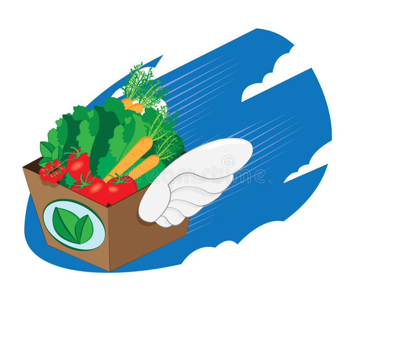 Winged carton package full of healthy and fresh food. A cartoon representing a winged carton package full of fresh vegetables and fruit flying and landing vector illustration