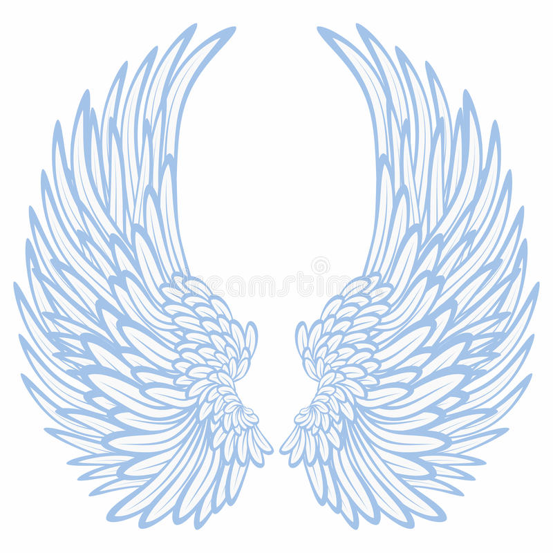 Wings royalty free illustration