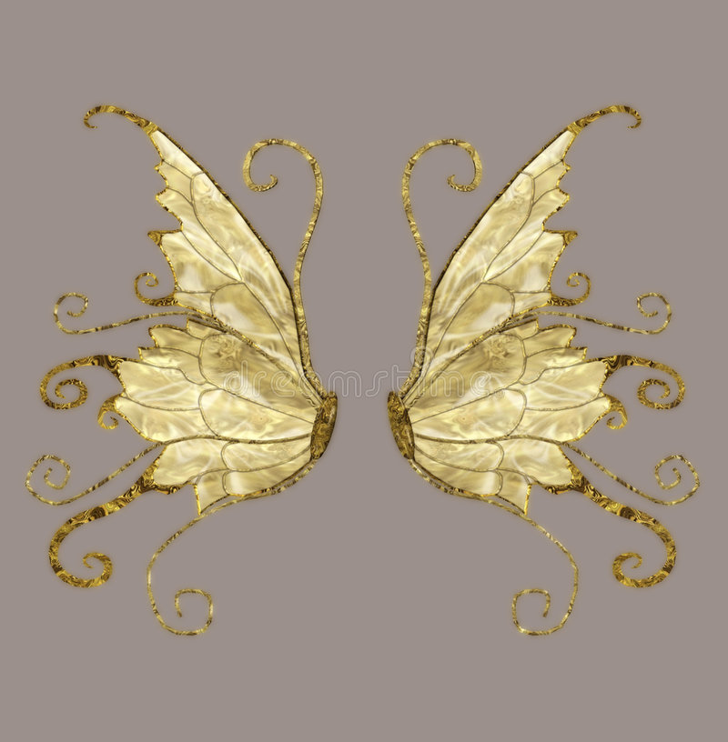 Wings. Anngel and/or fairy wings for your artistic creations