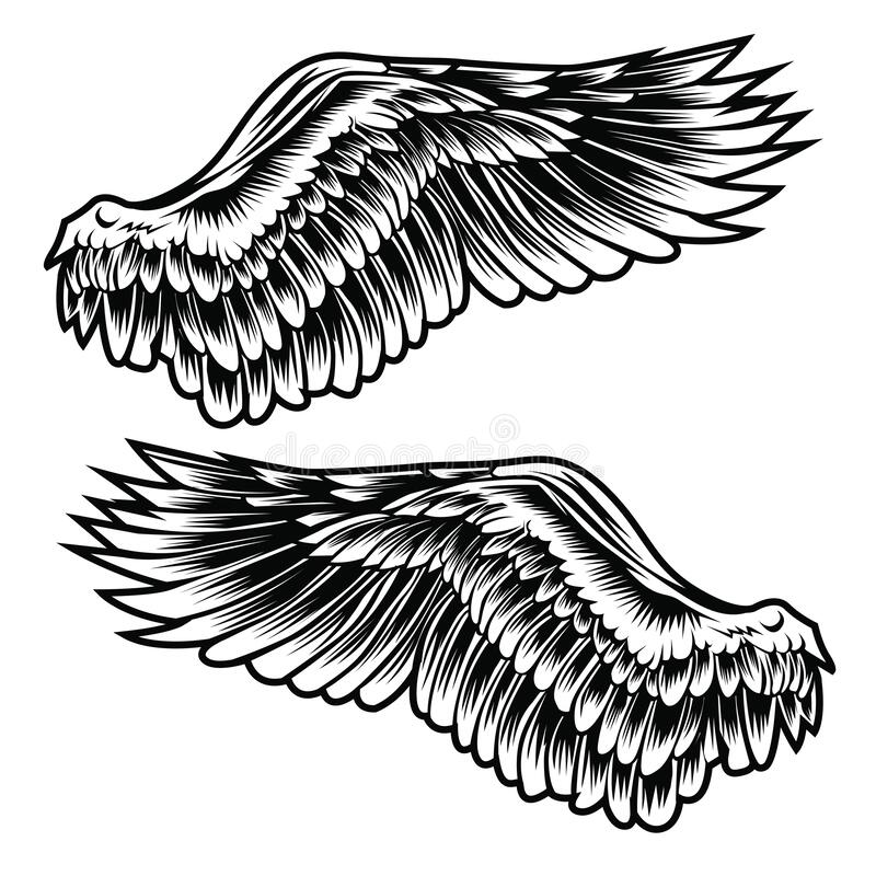 Free Wings Bird Feather Black & White Tattoo Vector Royalty Free Stock Image - 188951256
