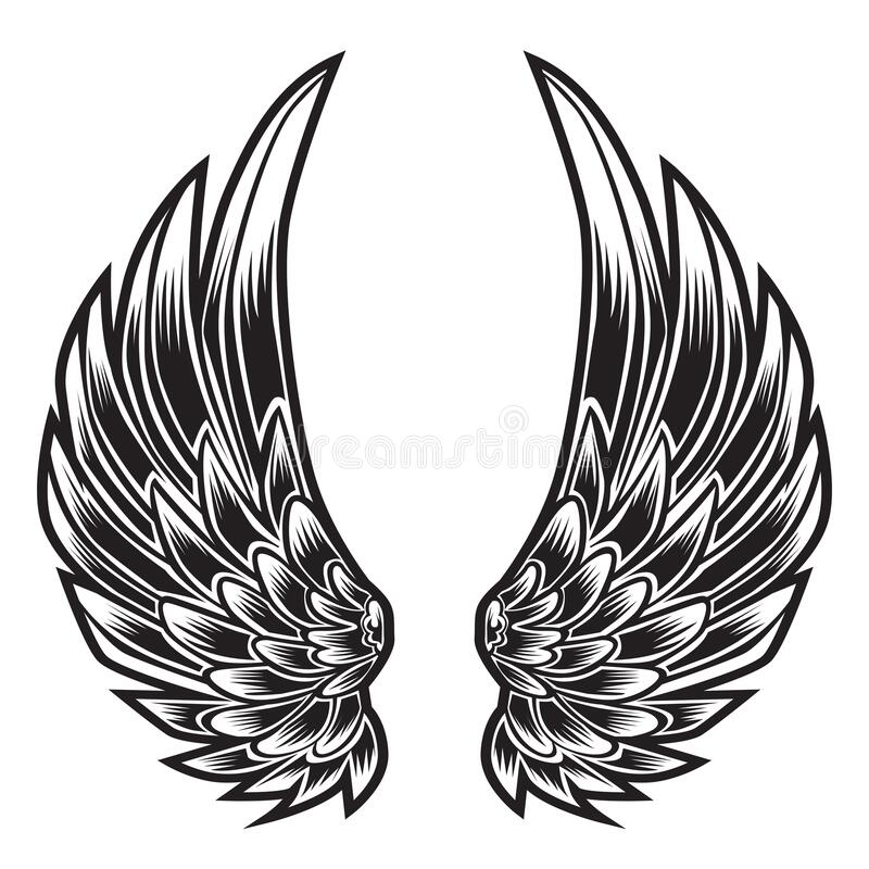 Free Wings Bird Feather Black & White Tattoo Vector Illustration 55 Royalty Free Stock Image - 188949066