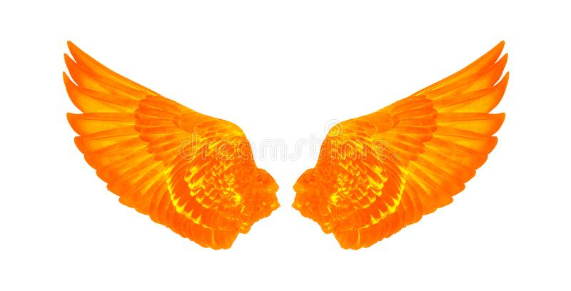 Wings of birds isolated on white background stock images