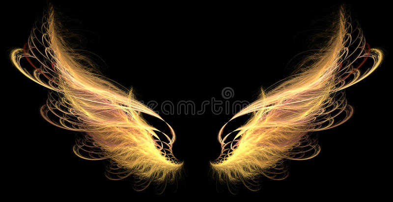 Wings (fire, demon) vector illustration