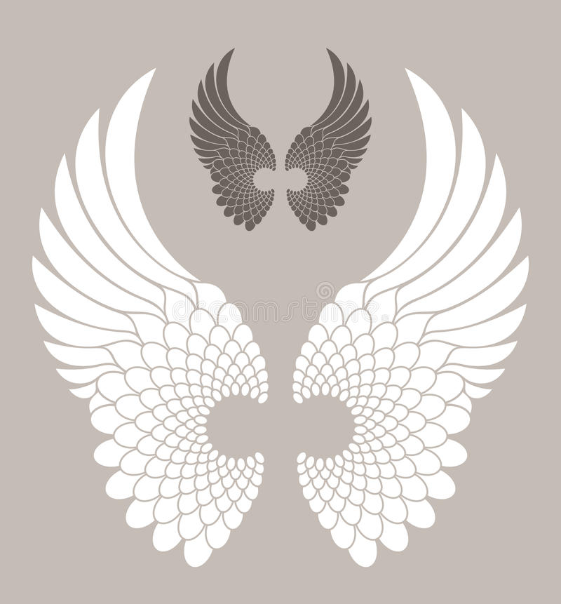 Wings. Isolated objects. Vector illustration (EPS 10 royalty free illustration