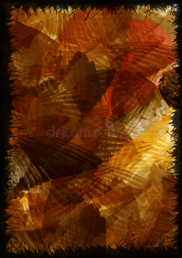 Wings in motion stock images