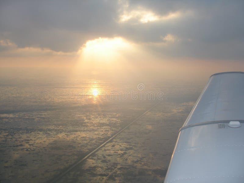 Wings over lake okeechobee stock image