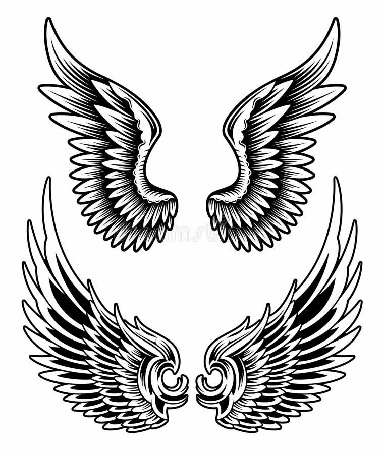 Wings Set Vector. Fully editable vector illustration of wings set on isolated white background, image suitable for design elements, emblem, insignia, coat of