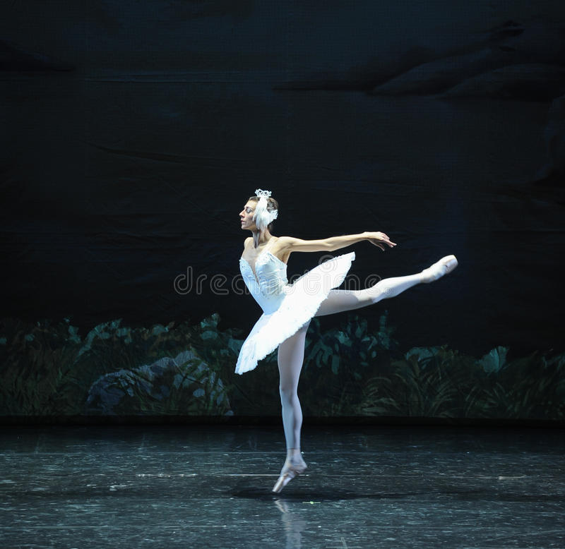 Wings to fly Swan-The Swan Lakeside-ballet Swan Lake stock image