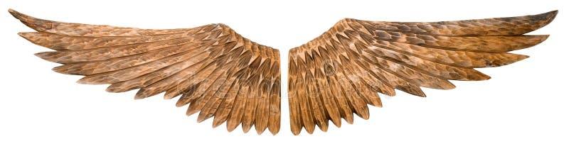 wings trä royaltyfri foto