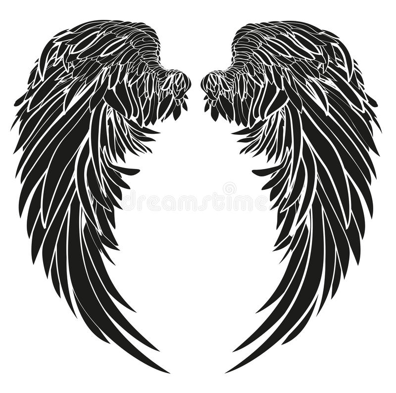 wings vector illustration on white background black and white rh dreamstime com wings vector art wings vector free download