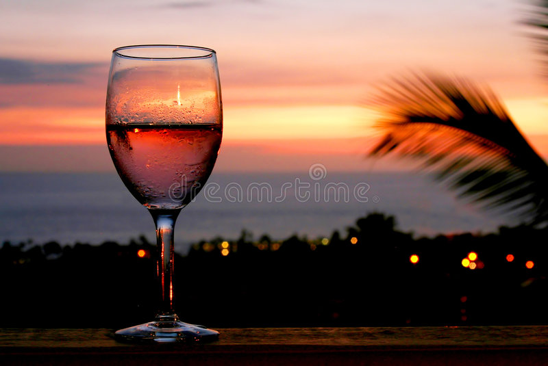 Wining and Dining royalty free stock photos