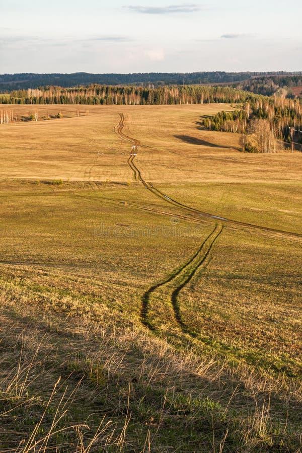 Winnende weg onder groene heuvelvelden in het vroege voorjaar royalty-vrije stock fotografie