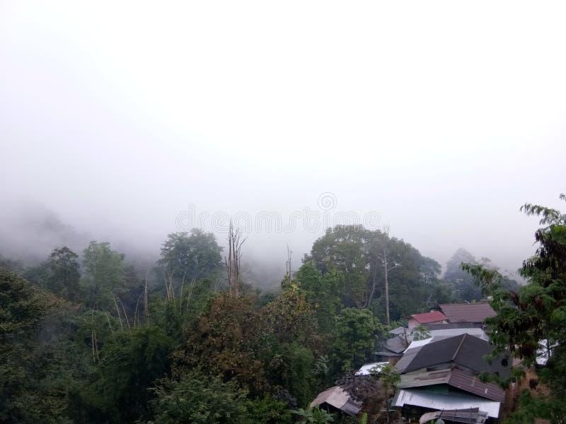 Winter of north chiangrai. Winner north chiangrai thailand sky royalty free stock photography