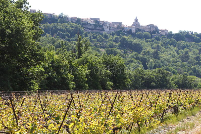 Winnica Venasque i wioska, Francja obraz royalty free