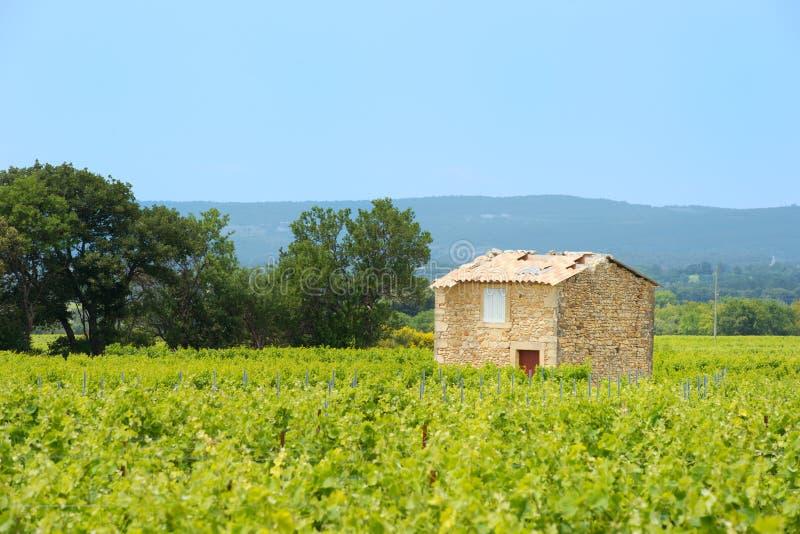 Winnica w Francja zdjęcie stock