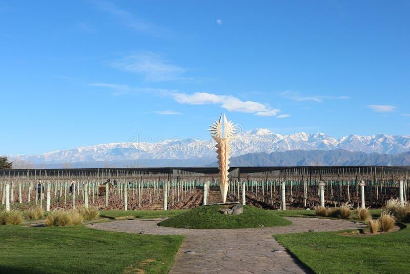 Winnica w Mendoza, Aconcagua tło fotografia stock