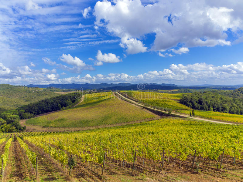 Winnica wieś w Tuscany, Włochy fotografia royalty free