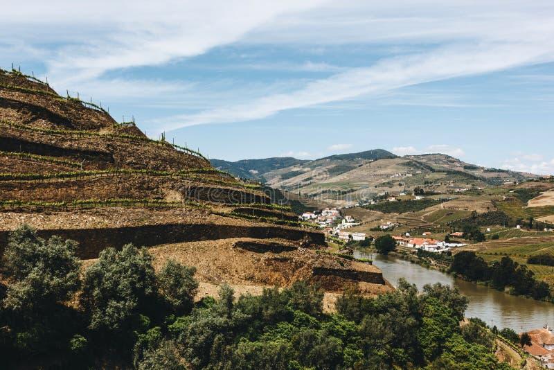 Winnicy blisko Duoro rzeki w Pinhao, Portugalia fotografia stock