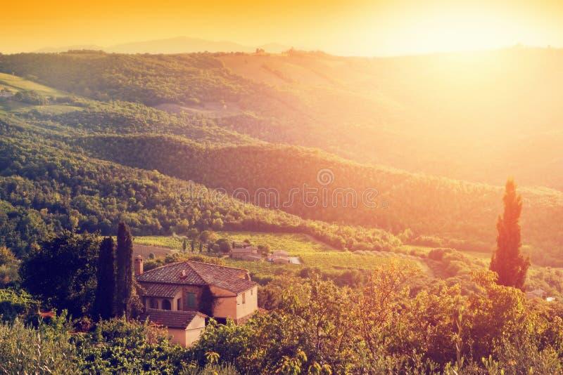 Winnicy i gospodarstwa rolnego dom, willa w Tuscany, Włochy przy zmierzchem obraz stock