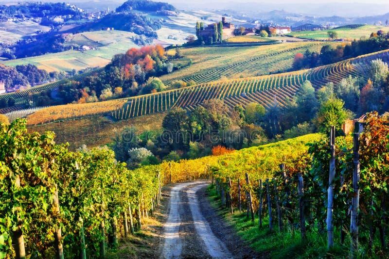 Winnicy i kasztele Piemonte w jesieni barwią Północ Ita zdjęcie stock