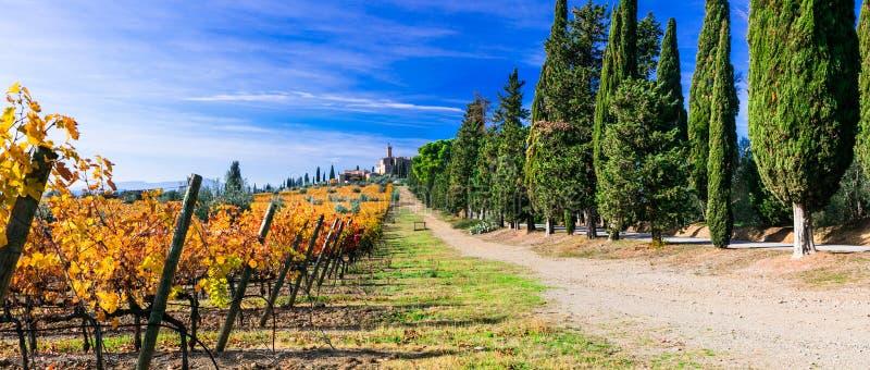 Winnicy i kasztele Tuscany w jesieni barwią Castello Banf fotografia royalty free