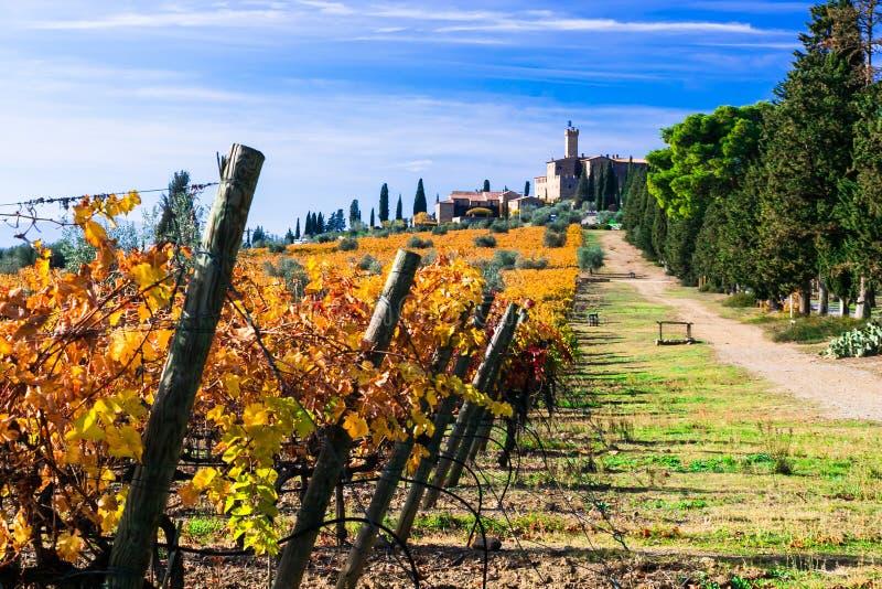 Winnicy i kasztele Tuscany w jesieni barwią Castello Banf obraz royalty free